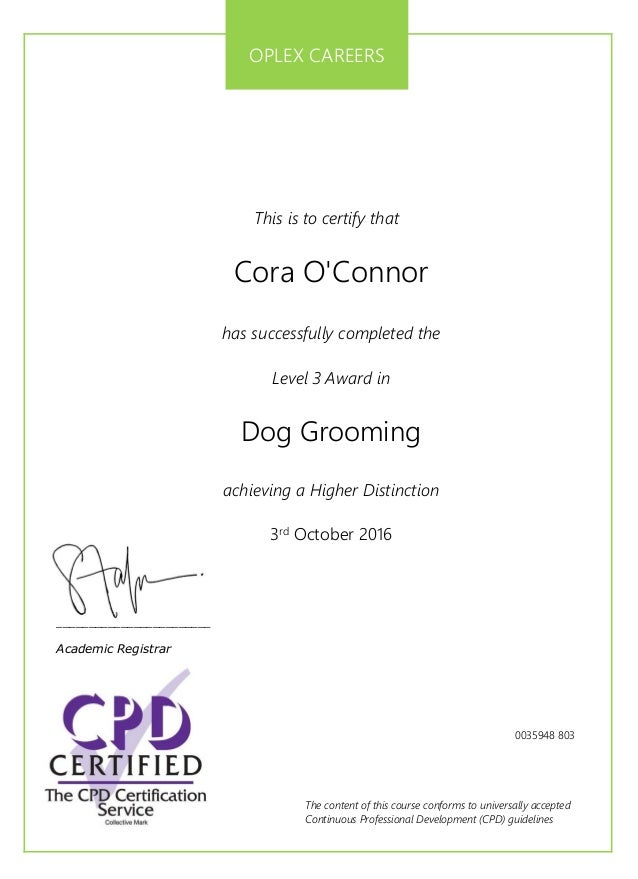 Dog Groomer Cpd Certificate
