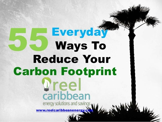 reducing our carbon footprint essay How to reduce your carbon footprint reducing your carbon footprint can a lot of the water we consume is actually wasted because of leaks we may have in our.