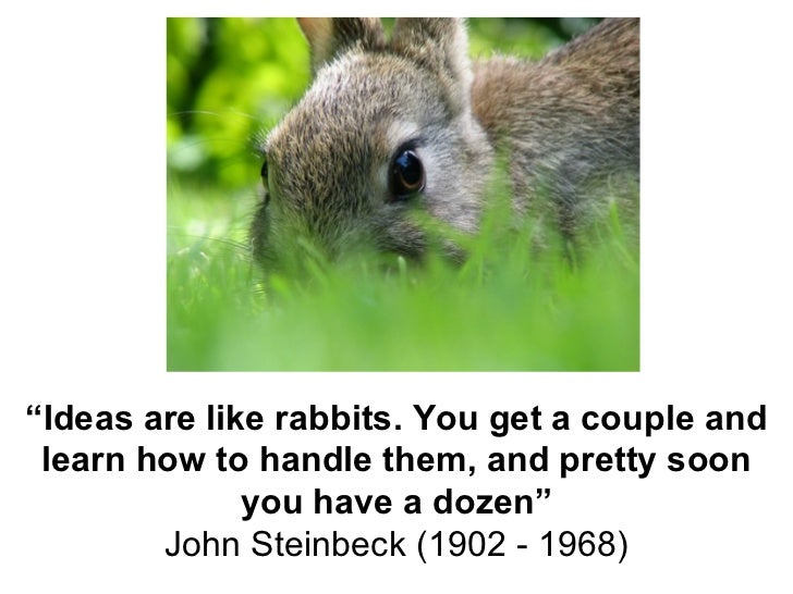 """ Ideas are like rabbits. You get a couple and learn how to handle them, and pretty soon you have a dozen"" John Steinbeck ..."