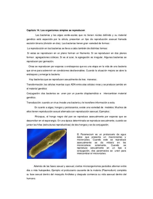 como curar a doenca gota acido urico gota pdf alimentos no permitidos acido urico