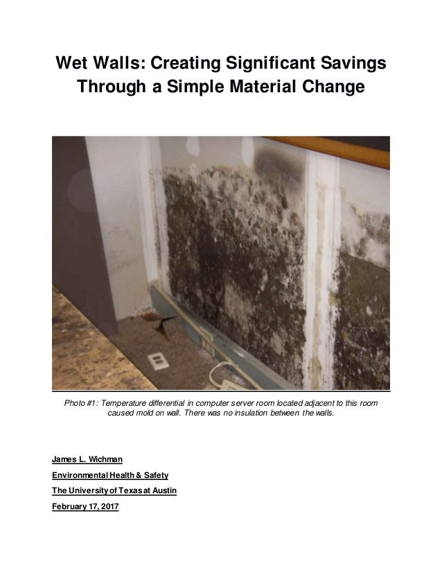 Wet Walls: Creating Significant Savings Through a Simple Material Change Photo #1: Temperature differential in computer se...