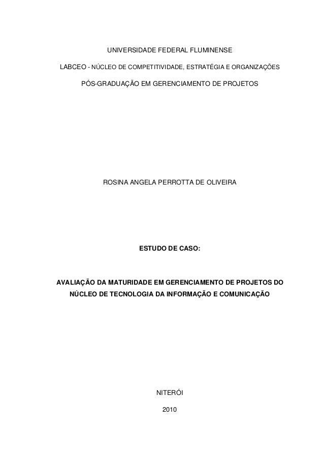 UNIVERSIDADE FEDERAL FLUMINENSE LABCEO -NÚCLEO DE COMPETITIVIDADE, ESTRATÉGIA E ORGANIZAÇÕES PÓS-GRADUAÇÃO EM GERENCIA...