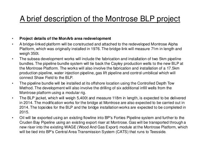 A brief description of the Montrose BLP project • Project details of the MonArb area redevelopment • A bridge-linked platf...