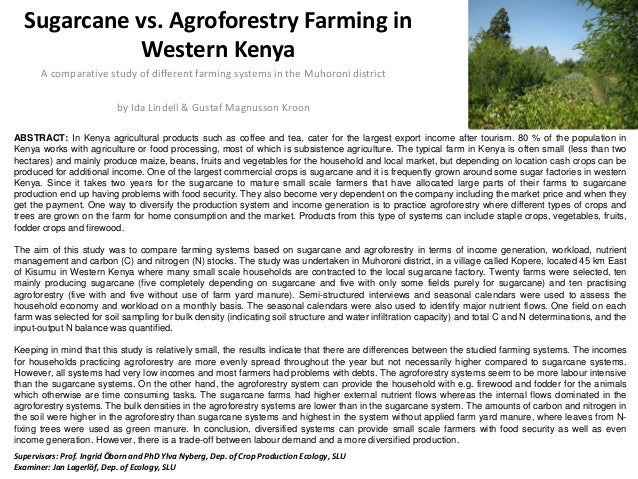 Sugarcane vs. Agroforestry Farming in Western Kenya A comparative study of different farming systems in the Muhoroni distr...