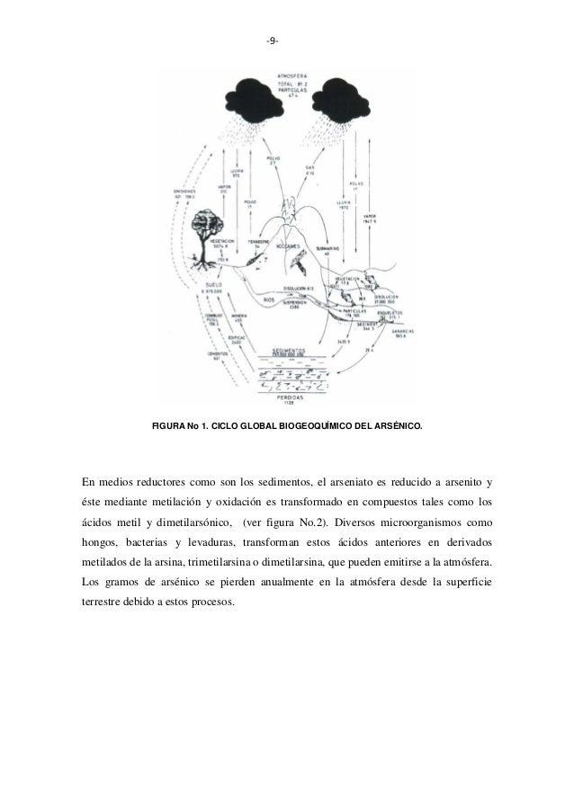 -9-  FIGURA No 1. CICLO GLOBAL BIOGEOQUÍMICO DEL ARSÉNICO.  En medios reductores como son los sedimentos, el arseniato es ...