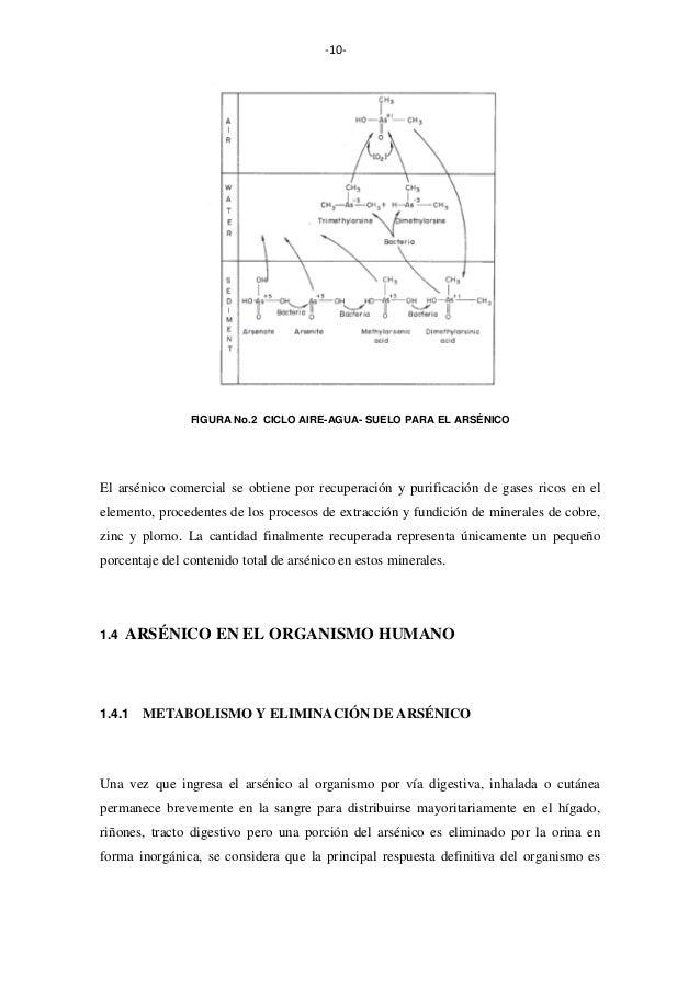 -10-  FIGURA No.2 CICLO AIRE-AGUA- SUELO PARA EL ARSÉNICO  El arsénico comercial se obtiene por recuperación y purificació...