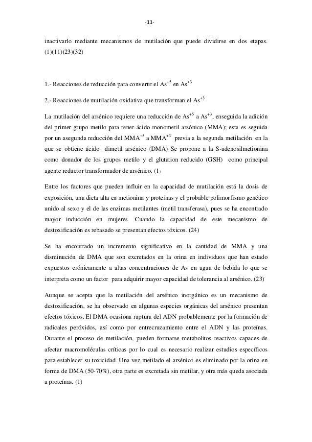 -11-  inactivarlo mediante mecanismos de mutilación que puede dividirse en dos etapas. (1)(11)(23)(32)  1.- Reacciones de ...