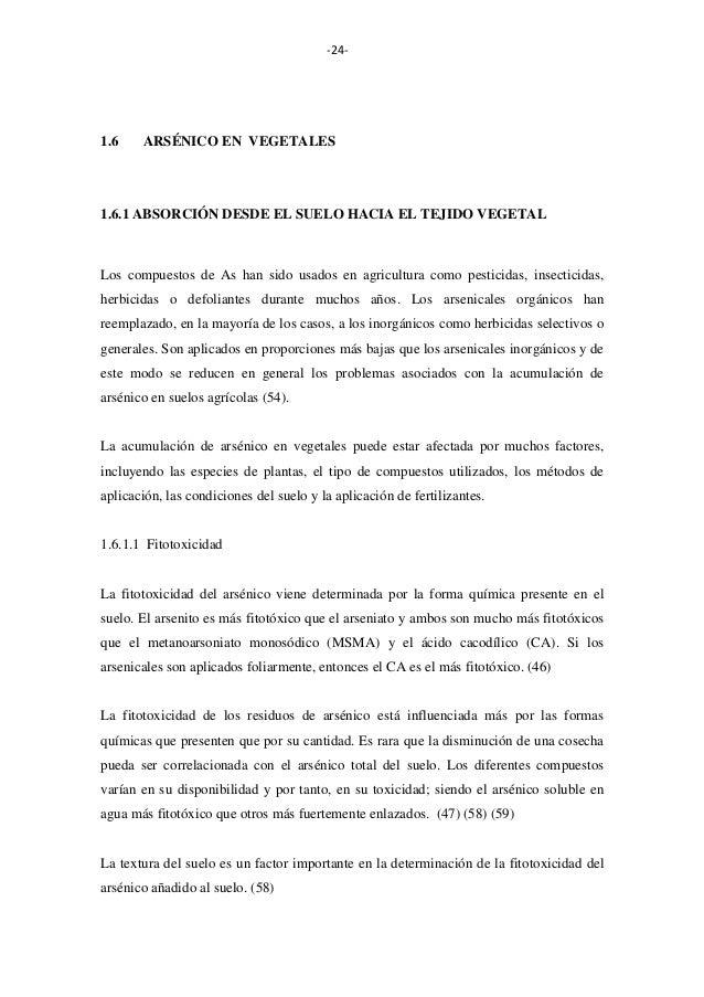 -24-  1.6  ARSÉNICO EN VEGETALES  1.6.1 ABSORCIÓN DESDE EL SUELO HACIA EL TEJIDO VEGETAL  Los compuestos de As han sido us...