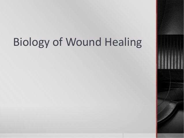 Biology of Wound Healing