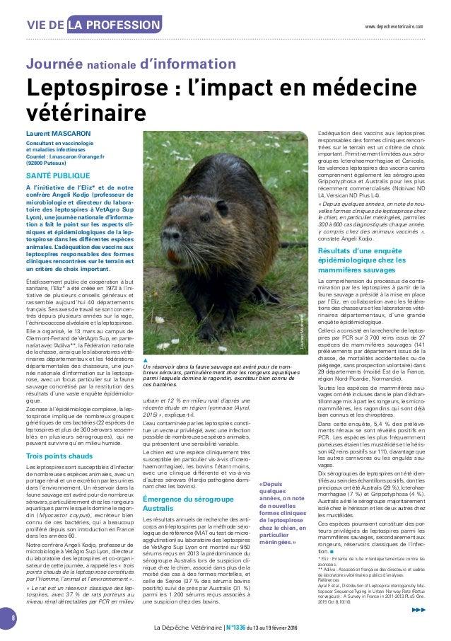 www.depecheveterinaire.com 8 Vie De LA PROFeSSiON La Dépêche Vétérinaire | N°1336 du 13 au 19 février 2016 Laurent MASCARO...