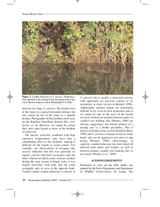 notes on the natural history of Notes on the natural history of the hispaniolan brown racer, haitiophis anomalus (squamata: dipsadidae), in the southern dominican republic.