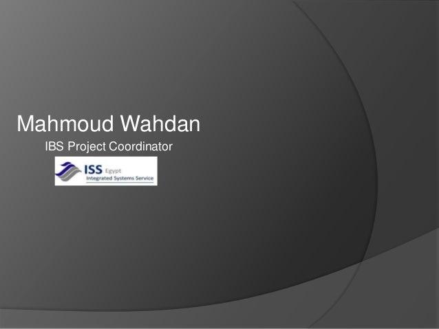 Mahmoud Wahdan IBS Project Coordinator