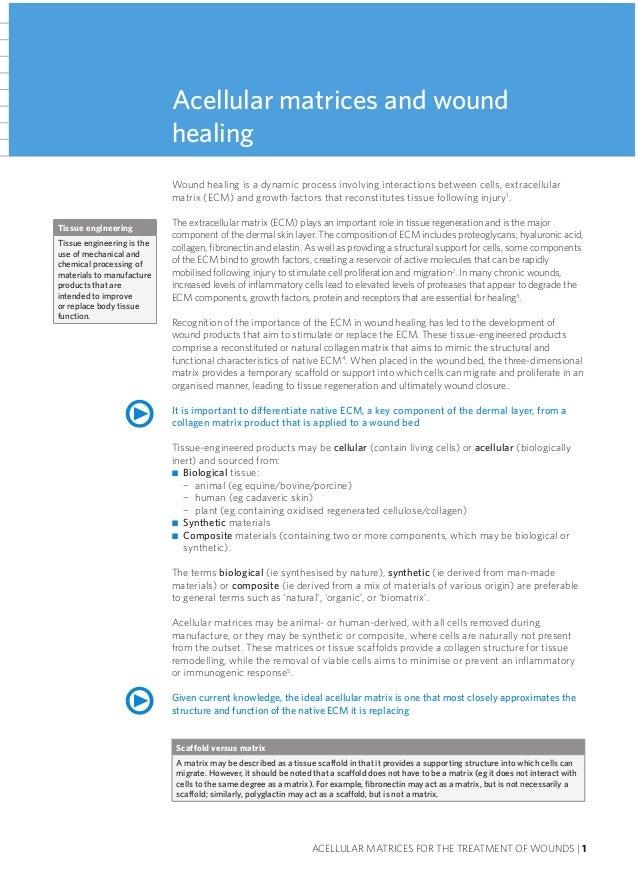pdf strömungslehre grundlagen 2auflage