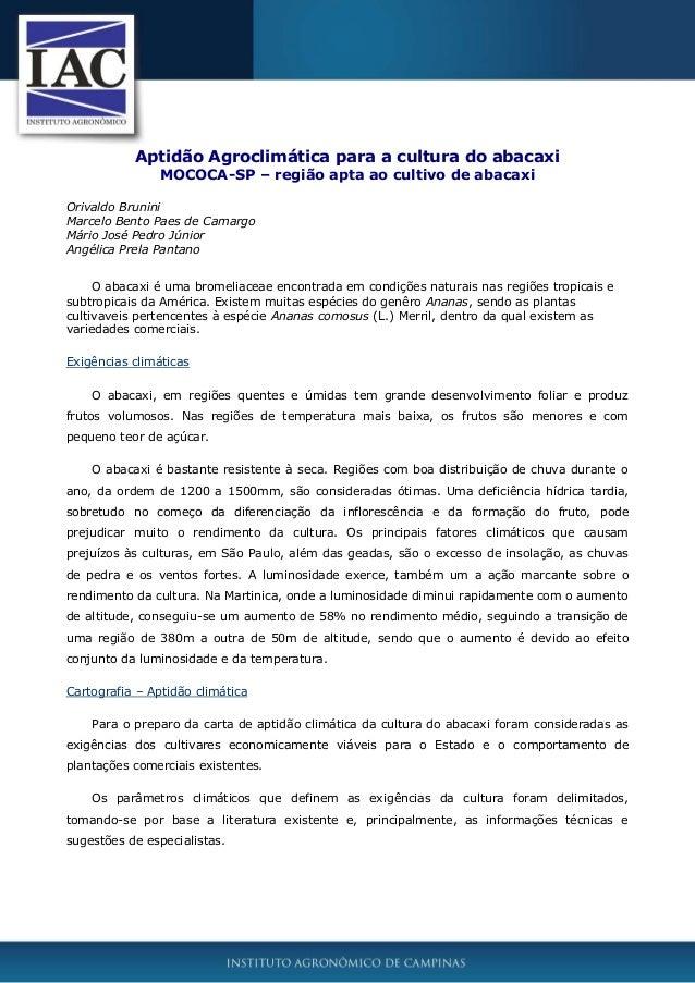 Aptidão Agroclimática para a cultura do abacaxi MOCOCA-SP – região apta ao cultivo de abacaxi Orivaldo Brunini Marcelo Ben...