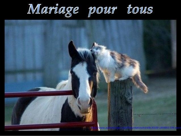 http://www.authorstream.com/Presentation/mireille30100-1849955-594-maria