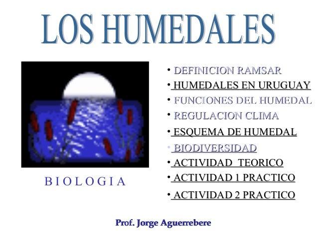 B I O L O G I A Prof. Jorge AguerrebereProf. Jorge Aguerrebere • DEFINICION RAMSARDEFINICION RAMSAR • REGULACION CLIMAREGU...