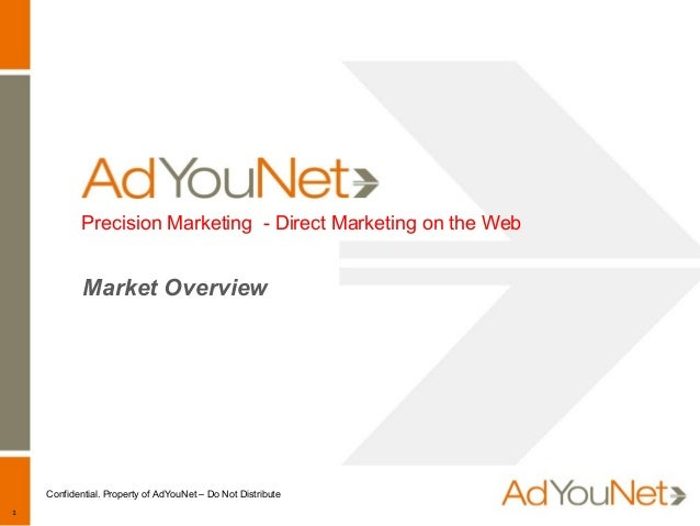 1 Confidential. Property of AdYouNet – Do Not Distribute Precision Marketing - Direct Marketing on the Web Market Overview