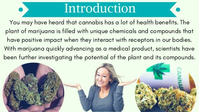 Introduction You may have heard that cannabis has a lot of health benefits. The plant of marijuana is filled with unique c...