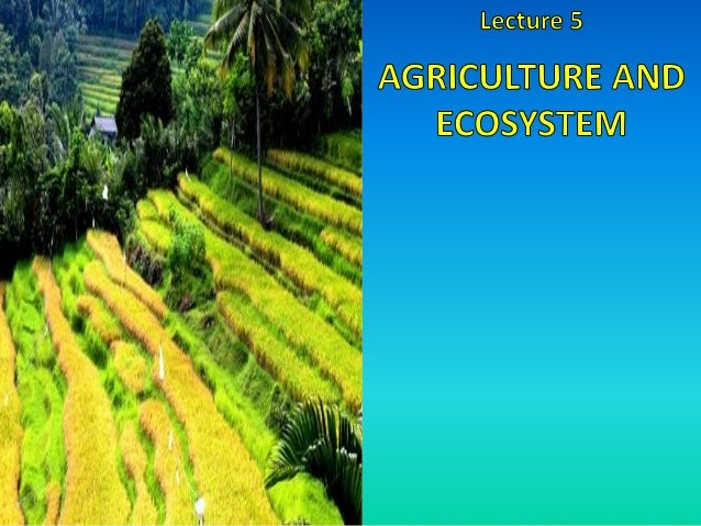 An ecosystem consists of the plants and animals of an area, and all the things which make up their surroundings – like soi...