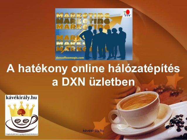 A hatékony online hálózatépítés a DXN üzletben kávékirály.hu