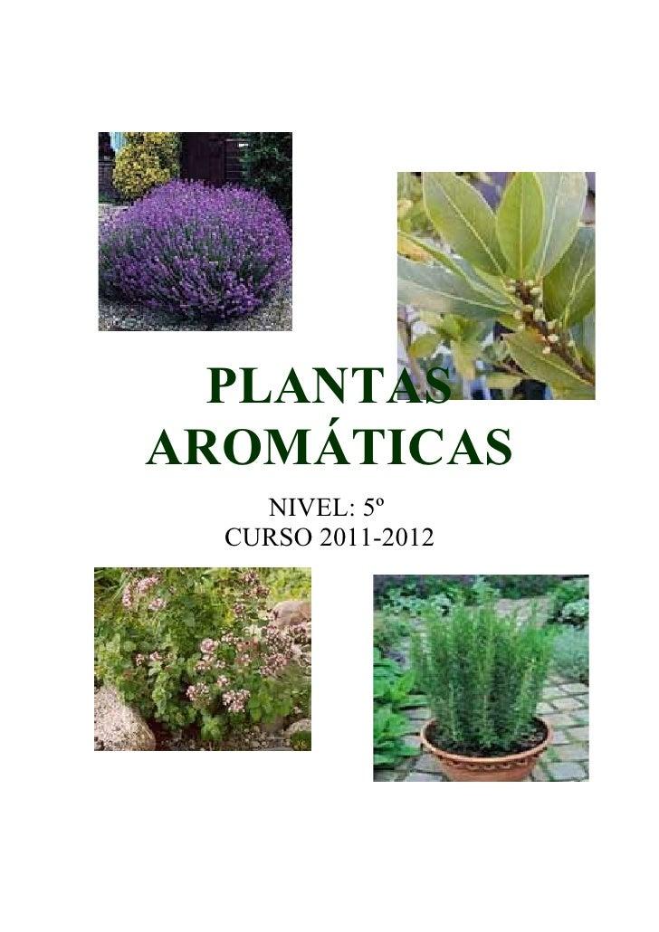 PLANTASAROMÁTICAS    NIVEL: 5º  CURSO 2011-2012