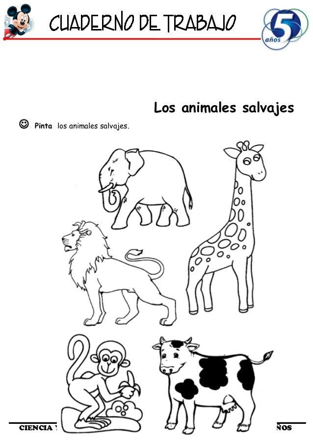 Moderno Hojas De Trabajo Animales Imprimibles Ideas - hojas de ...