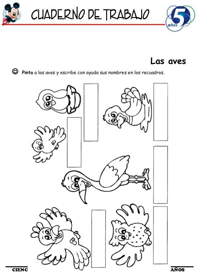 Cuaderno de Trabajo II - 5 Años Ciencia y Ambiente