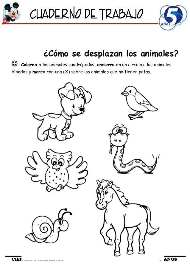 Excepcional Colorear Hojas De Trabajo De Animales Elaboración ...