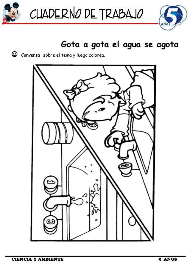 Cuaderno de Trabajo III - 5 Años Ciencia y Ambiente