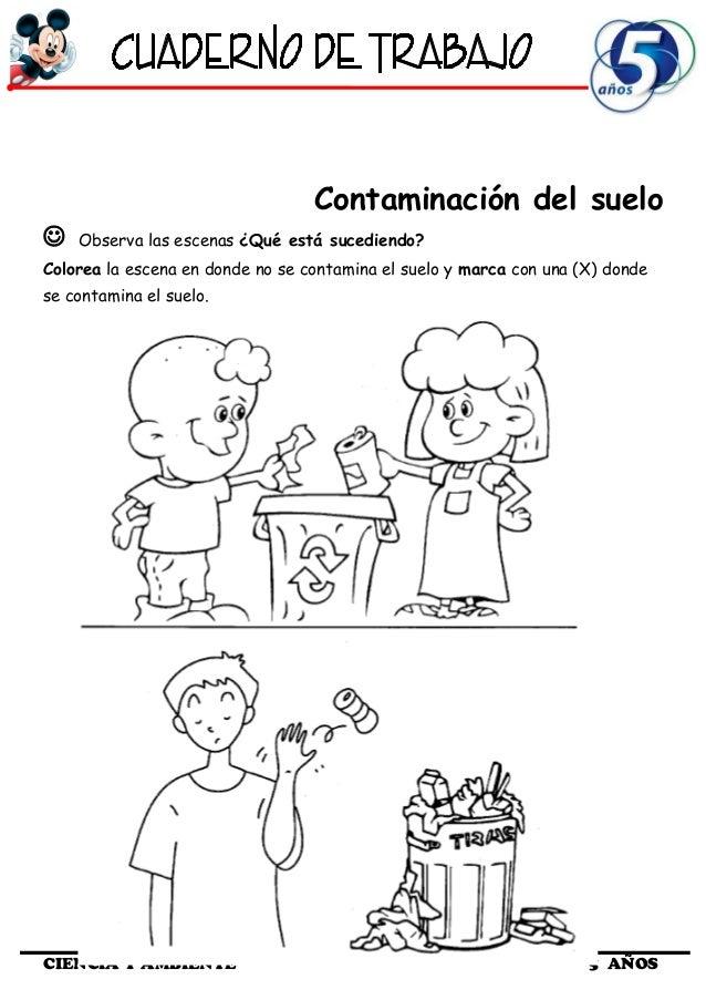 Cuaderno de Trabajo III   5 Años Ciencia y Ambiente