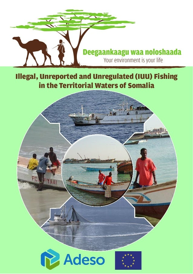 Illegal, Unreported and Unregulated (IUU) Fishing in the Territorial Waters of Somalia