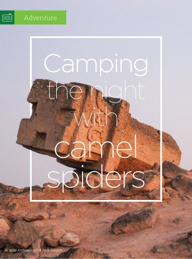 Al balid Archaeological Park Salalah Camping the night with camel spiders Adventure