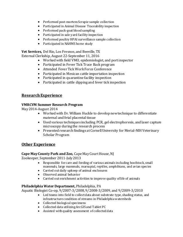 andrew jones resume