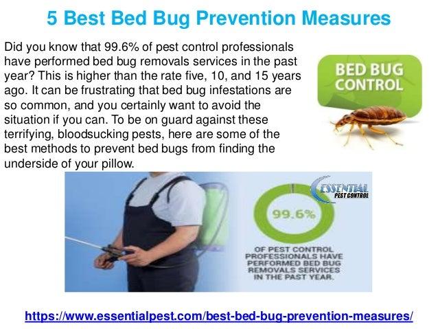 5 Best Bed Bug Prevention Measures