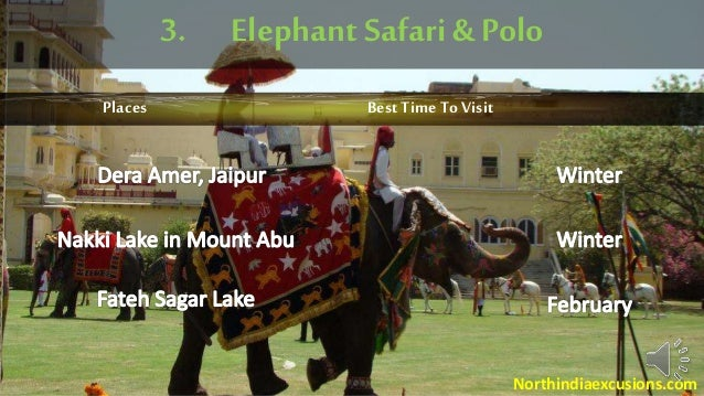 3. Elephant Safari & Polo Places Best Time To Visit Northindiaexcusions.com