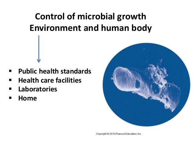 5 Bio265 Antimicrobial Agents Instructor Dr Di Bonaventura