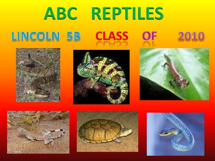 ABC   REPTILES<br />class<br />of<br />LINCOLN  5B<br />2010<br />