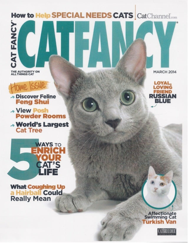 Cat Fancy Guinness World Record Article