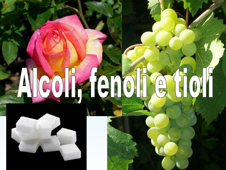 Alcoli, fenoli e tioli