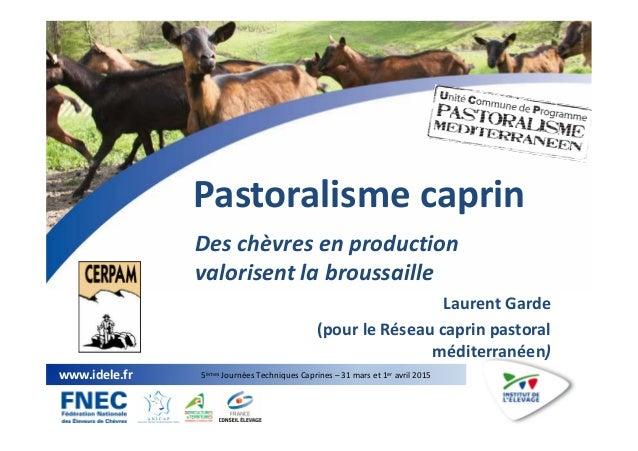 1 www.idele.fr 5èmes Journées Techniques Caprines – 31 mars et 1er avril 2015 Pastoralisme caprin Des chèvres en productio...