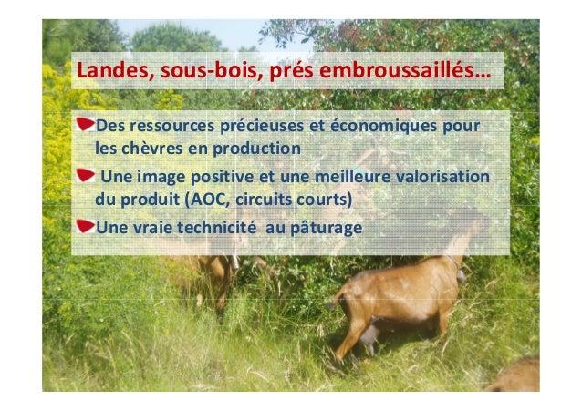 Demande de partenariat d 39 une fromagerie bio dans le lot et - Chambre agriculture avignon ...