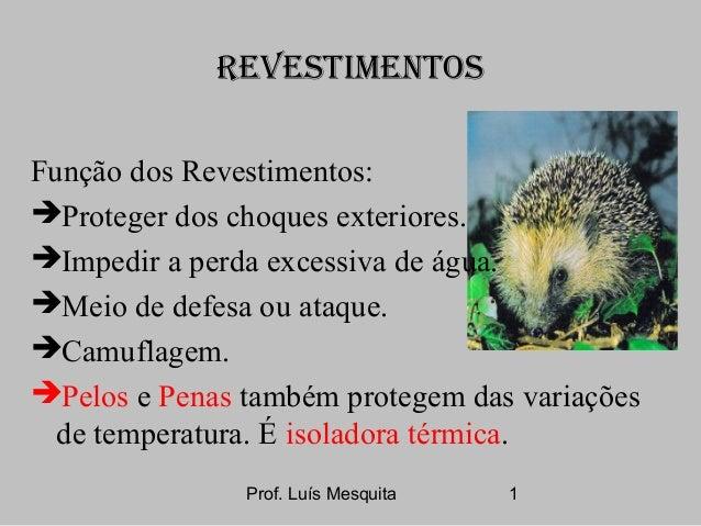 Prof. Luís Mesquita 1 REVESTIMENTOS Função dos Revestimentos: Proteger dos choques exteriores. Impedir a perda excessiva...
