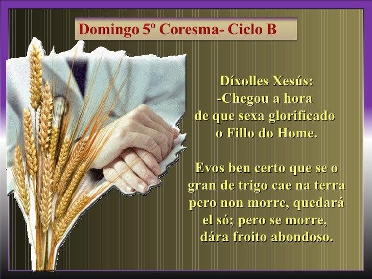 Díxolles Xesús:     -Chegou a hora de que sexa glorificado    o Fillo do Home. Evos ben certo que se ogran de trigo cae na...