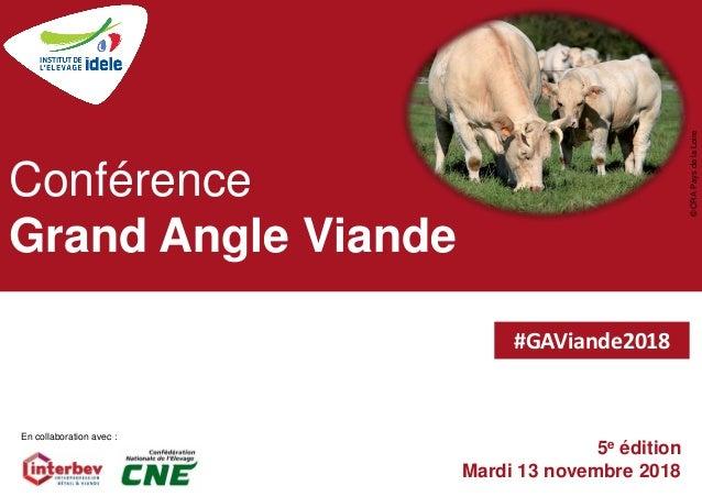 5e édition Mardi 13 novembre 2018 Conférence Grand Angle Viande ©CRAPaysdelaLoire En collaboration avec : #GAViande2018