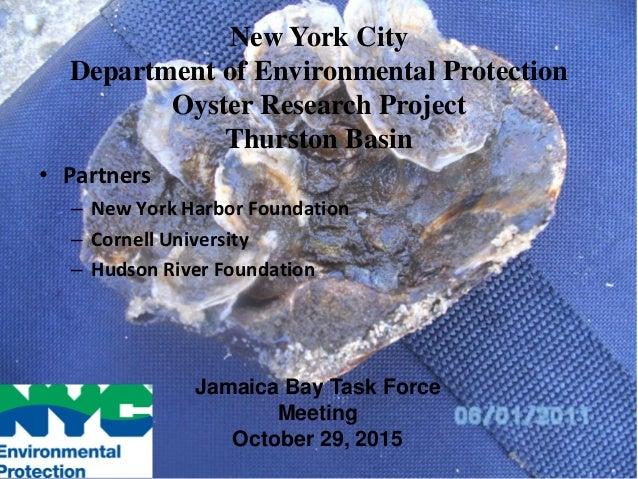 • Partners – New York Harbor Foundation – Cornell University – Hudson River Foundation New York City Department of Environ...