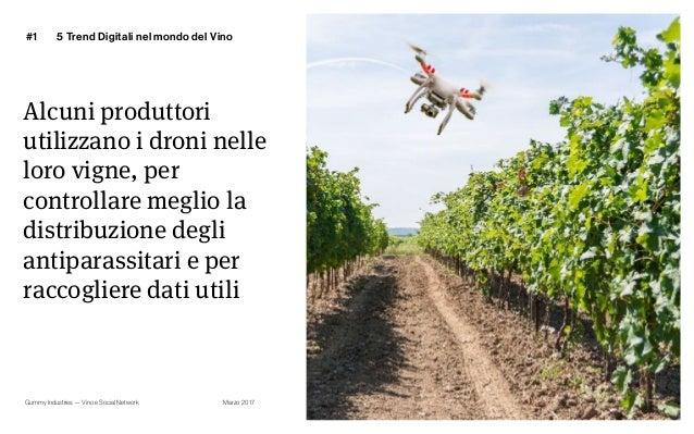 Gummy Industries — Vino e Social Network Marzo 2017 Alcuni produttori utilizzano i droni nelle loro vigne, per controllare...