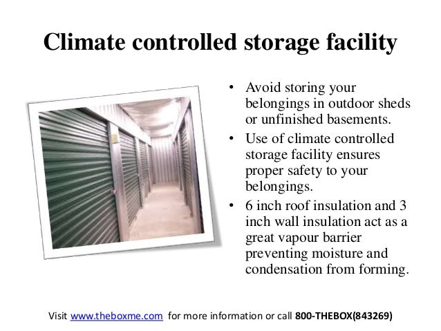 5 Eco Friendly Dubai Self Storage Facility Tips
