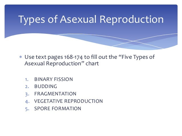 Two different types of asexual reproduction