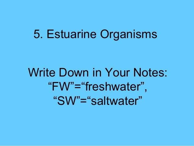 "5. Estuarine OrganismsWrite Down in Your Notes:    ""FW""=""freshwater"",     ""SW""=""saltwater"""