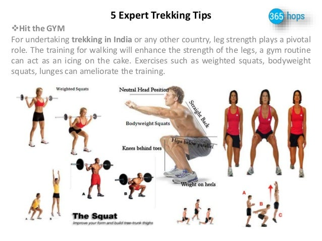 5 Expert Trekking Tips  Hit the GYM  For undertaking trekking in India or any other country, leg strength plays a pivotal...